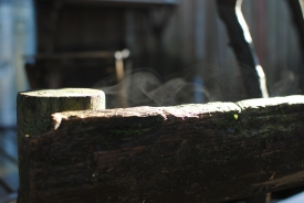 Wood drying in the sun