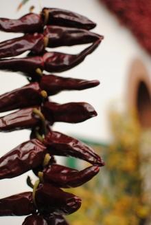Chilis closeup