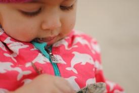 Sand tasting